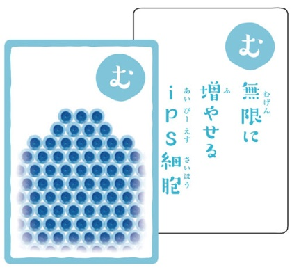 """京都大学iPS細胞研究所制作の「幹細胞かるた」。最後で<a href=""""./?P=3#section1"""">解説</a>しています。"""