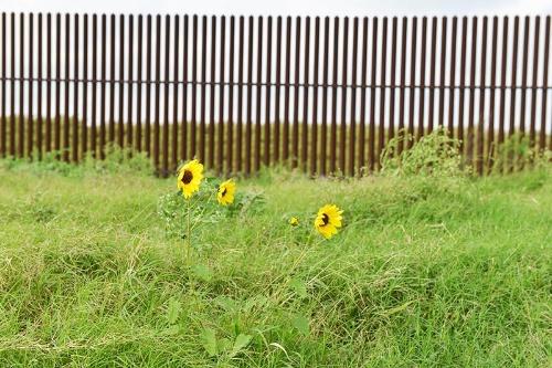 敷地は国境のフェンスで囲まれている