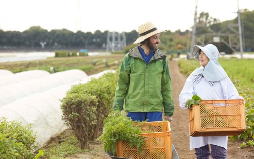 農業分野で働く外国人は「単純労働」それとも「特定技能」?(写真:PIXTA)