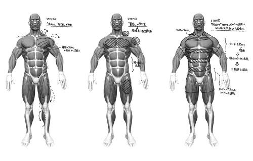 筋肉の構造や流れを調べ、どこにボーダー柄を当てれば体が大きく、強そうに見えるかを研究した