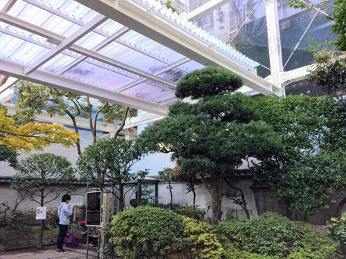 大手町にある将門塚。手を合わせる男性の前の「塚」は強化ガラスで保護され、さらに上部にもガラス屋根がかけられている。