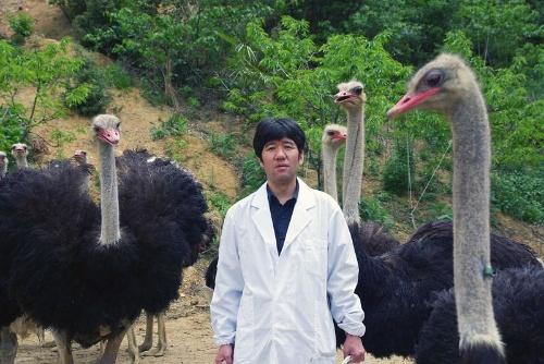 塚本康浩教授は1968年京都府生まれ。獣医師、獣医学博士。京都府立大学大学院 生命環境科学研究科教授。2008年にオーストリッチファーマ株式会社を設立し、抗体の研究に取り組む。現在神戸や京都に4つのダチョウ牧場があり、約500羽を飼育中