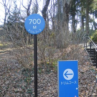 歩数の測定は、近所のトリムコースで行った。ジョギングやウォーキング用のコースなので歩きやすく、距離もわかるので一石二鳥だった