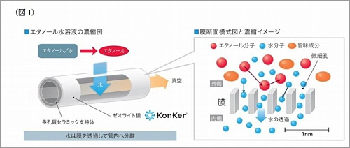 コンカーを使用してエタノールを濃縮した場合のモデル図。セラミック基材の上にゼオライトを膜状に形成したもので、見た目は単なるパイプのよう。液体を満たした容器の中にそのパイプを入れ、パイプの中を真空にすると、外側の液体から水分だけが中に引き込まれる。外側にはその液体の成分が濃縮されて残る