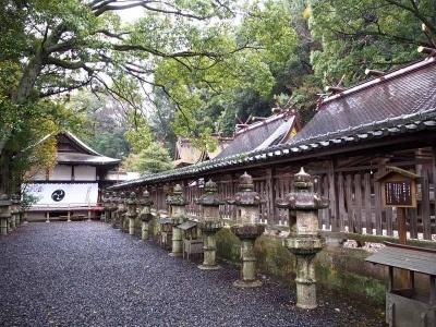 熊野三山すべての祭神を祀り、別宮的存在として熊野信仰の一翼を担ってきた「闘鶏神社」。源平合戦のとき、紅白の鶏を戦わせて源氏に味方することを決めたとされ、勝運導きの神様としても親しまれている