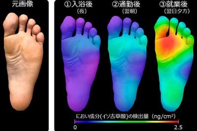 花王香料開発研究所の臭い成分の存在状況を可視化するScentEYE(セントアイ)技術による、足の裏の臭い
