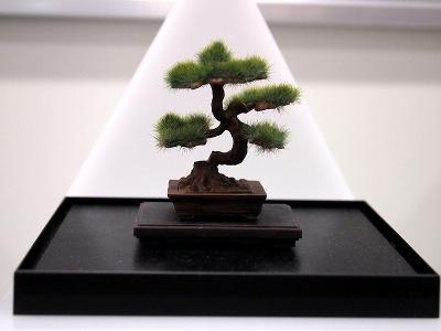 プラッツ「ザ・盆栽 プラスチックモデルキット」(各1500円)。写真は「盆栽ー肆ー」
