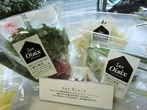 「サラダや冷やし中華に使える3種の野菜」(486円)。きゅうり、フリルレタス、トマトがセットされている。「ねぎ、生姜、みょうが、大葉4種の薬味」(268円)も新発売