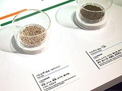 日々の薬として展示されていた薬草は、ハトムギやドクダミ。どこかで聞いたと思ったら、爽健美茶や十六茶の材料だ