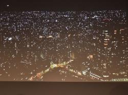 こちらはマイナス補正で夜景を撮影した写真。街路灯で照らされた道路なども白飛びせず精細に写し取っていた
