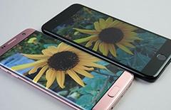 写真を横から見ると、iPhone 7 Plus(右上)は色合いが変わって見える