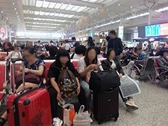 空港+高速鉄道+地下鉄+バスターミナルで非常に広大な上海虹橋枢紐
