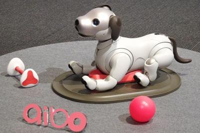 国内で人気のミニチュアダックスフント風の愛らしいデザインを採用する。ピンク色のボールや充電台は本体に付属するが、前方にある骨型おもちゃ「アイボーン」は別売となる(希望小売価格は2980円)