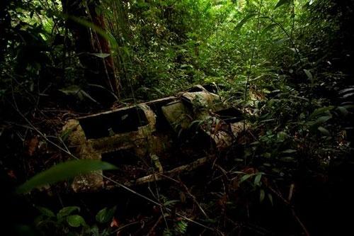 ガリンペイロの小屋の裏手に墜落したセスナ機の残骸があった。定員を遥かに超えるガリンペイロを乗せていたという  (c)Eduard MAKINO