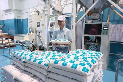 クボタがシンガポールに持ち込んだ精米機。新鮮な米を届けられる体制を作った。(撮影すべて:原 隆夫)