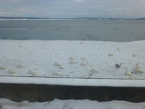 車窓から見る厚岸湖