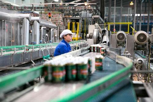 工場では急ピッチで設備増強が進んでいる(写真:的野弘路)