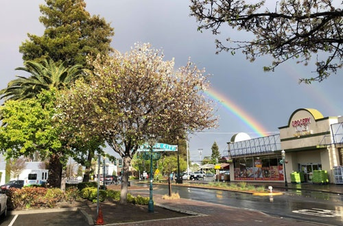 オフィスの窓から、鮮やかな虹が!