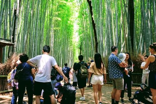 外国人観光客でひしめく竹林のトンネル
