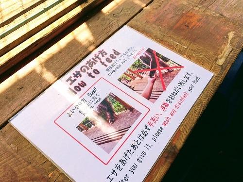 嵐山モンキーパークいわたやまの注意書き。「おサルには餌を手渡しであげないで」と英語で書いてあるが…