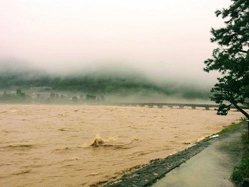 氾濫寸前の渡月橋界隈