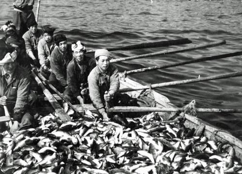 かつてはニシンの豊漁に沸いた(写真:読売新聞/アフロ)