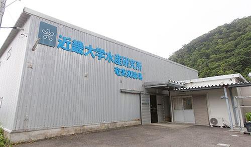 (上・下) 奄美実験場は鹿児島県奄美大島南部の瀬戸内町に位置する。沖合には、直径20~30mの巨大な円形の網いけすが並んでいる。