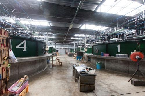 屋内の建物では、生後約1カ月までのマグロの稚魚が育てられる。それらの餌となるプランクトンや、孵化仔魚も同じ建物内で生産されている。