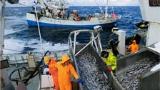 ジム付き漁船、ノルウェーの贅沢な漁師たち
