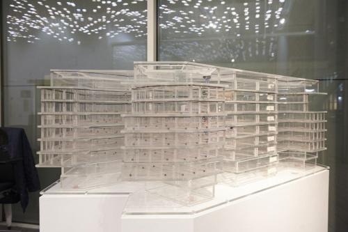 設計に当たって建屋内の空調などによる熱の動きを可視化するため、透明な板で組んだ模型に温度の異なる着色した液体を流せるようにした(写真:永川 智子)