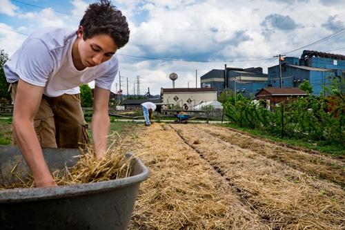 住民が作るブラドックのガーデン(写真:Peto Marovich)