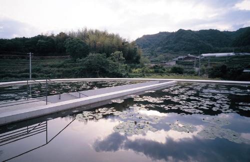本福寺水御堂の水盤。左の階段から建物内に入る(写真:三島 叡)