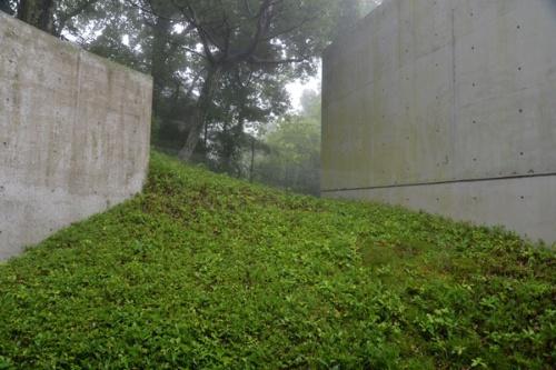 斜面に埋もれるように立つ(写真:日経アーキテクチュア)