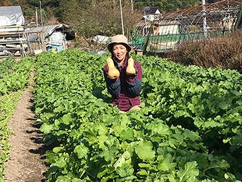 前川農園は姉の前川すずみ代表と、妹の池田淳子副代表の二人三脚で野菜を栽培する