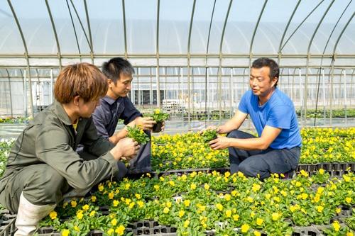 糸島で野菜や花の苗を生産する早川英人氏は、「糸島の農業を活性化する上で、フレッサ福岡の選手は貴重な戦力になる」と話す<br />(写真=諸石 信)