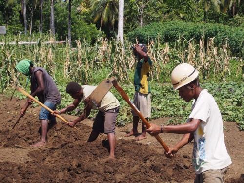 コスモグループは、「エコカード基金」を活用し、国内外の環境保全事業に資金を提供している