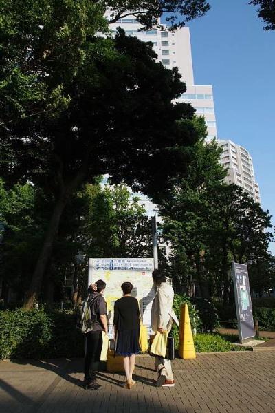 左から小田嶋さん、清野さん、岡さん(写真:柳瀬 博一)