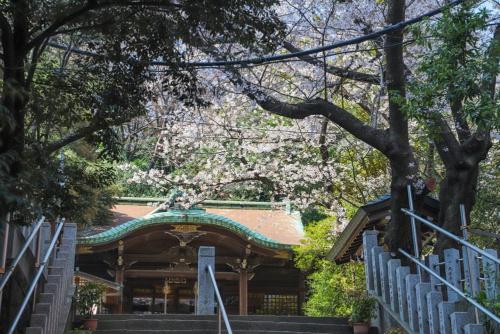 階段を上ると御田八幡神社の境内だ。後ろの森は崖。崖の向こうの台地の尾根を二本榎通りが通っている。社殿は崖の斜面の途中にある