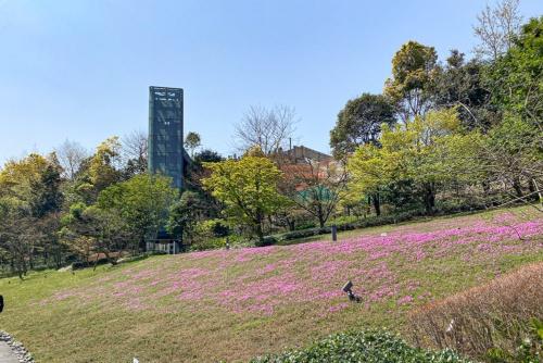 芝桜が植えられた斜面に現れるエレベーター塔。これを使って崖上と行き来できる