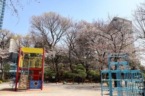 亀塚公園の亀塚。古墳であるともされ、室町時代には太田道灌が物見に使ったという。当時は眺めがすごくよかったはず