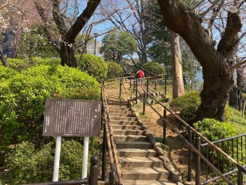 亀塚。墳頂へは階段で上れる