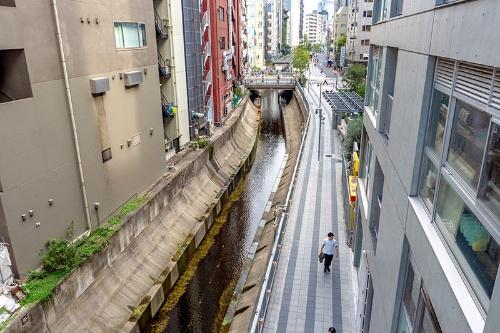 高架通路の端のテラスから、渋谷駅を背にして、渋谷川、渋谷リバーストリートを見下ろしたところ。今の渋谷川の様子がよく分かる。この先に並木橋がある