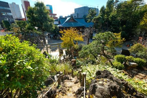 富士塚の山頂から鳩森八幡神社の社殿を見下ろす