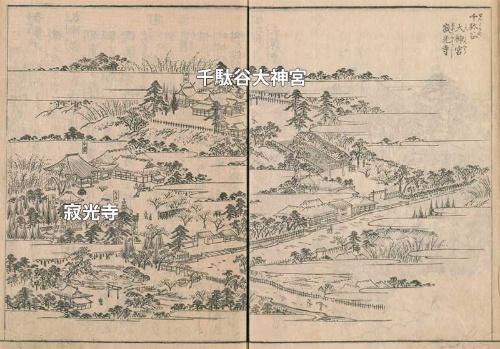 江戸名所図会に描かれた寂光寺と千駄谷大神宮。これを見ると当時の地形がうかがえる。千駄谷大神宮は少し高い場所にあったように見える。今はどちらも国立競技場の下だ。ちなみに本文で紹介した「お鷹の松」は図中文字「寂光寺」の右手あたりに「遊女松」として描かれている