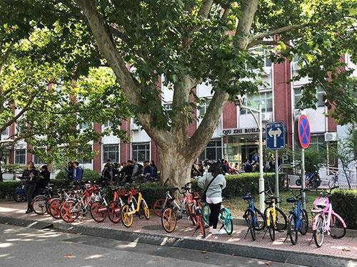 キャンパス内の移動で使われる色とりどりのシェア自転車。