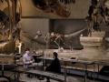 恐竜絶滅の原因は本当に隕石なのか
