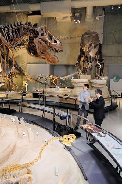 現在の常設展。向こうからやってくるトリケラトプス(右奥)をティラノサウルス(左手前)が待ち伏せしている様子が復元されている。