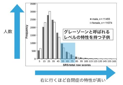 一般児童集団におけるASD症状の連続分布。SRSは対人コミュニケーションをはじめ、自閉症的な行動特性を評価する尺度。全国の小中学校の通常学級に通う生徒たちを対象に広く調査を行った結果、自閉症の傾向は連続しており、グレーゾーンがあることも示された。Kamio et al.(2013)より引用改変。(画像提供:神尾陽子、こころの健康教室サニタ「心の健康発達・成長支援マニュアル」「第2章:こどもの心のトラブルとその特徴 vi心の問題を抱えやすい発達障害」(岡琢哉、神尾陽子)より転載)