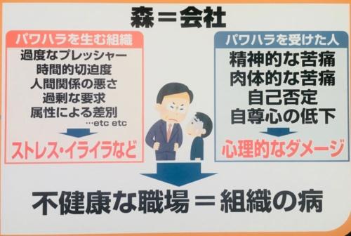 河合作成 提供:「モーニングCROSS(TOKYO MXテレビ)」