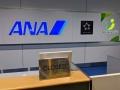 ANA「年収3割減」に見る経営者の覚悟と選択